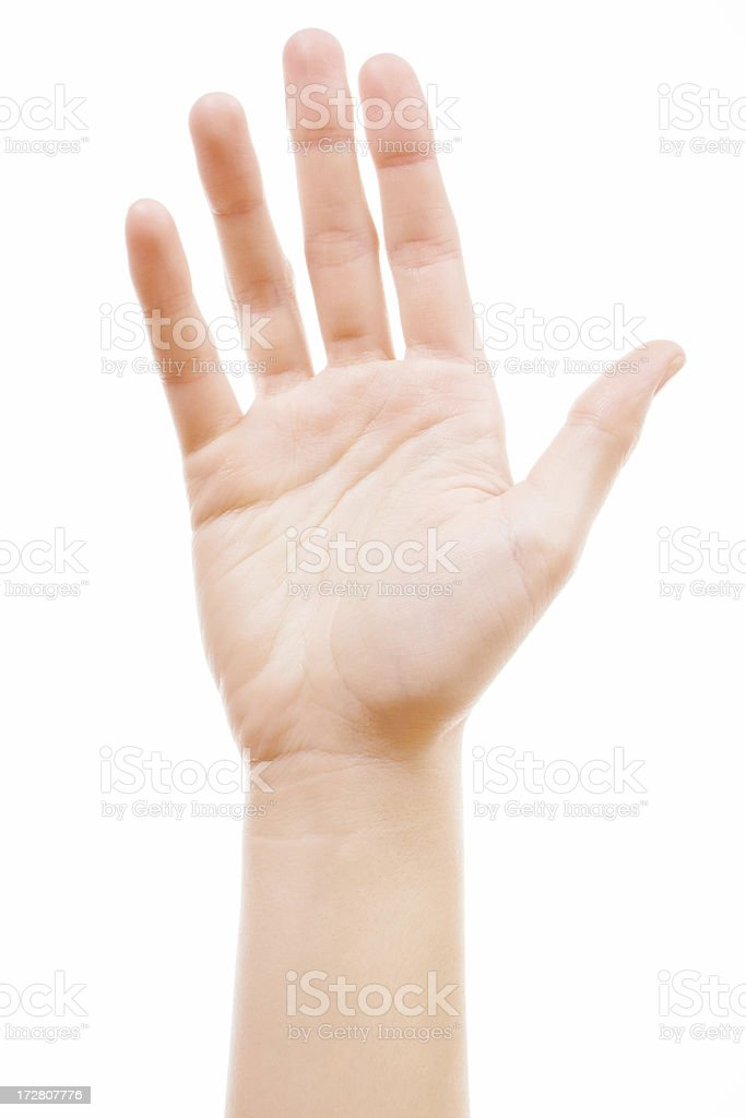 girl's palm royalty-free stock photo