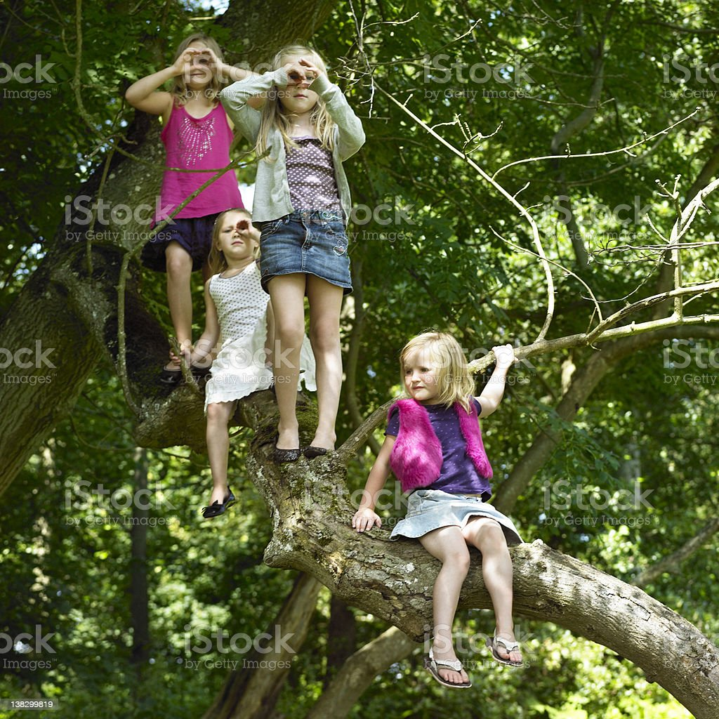 Girls playing with telescopes in tree stock photo