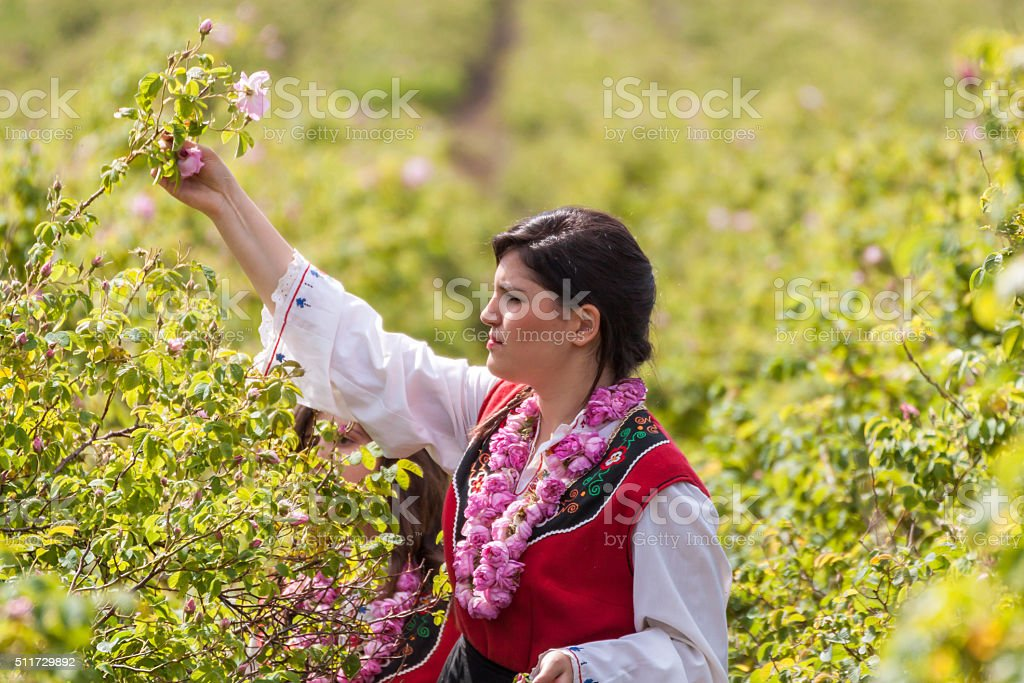 Girls posing during the Rose picking festival in Bulgaria stock photo