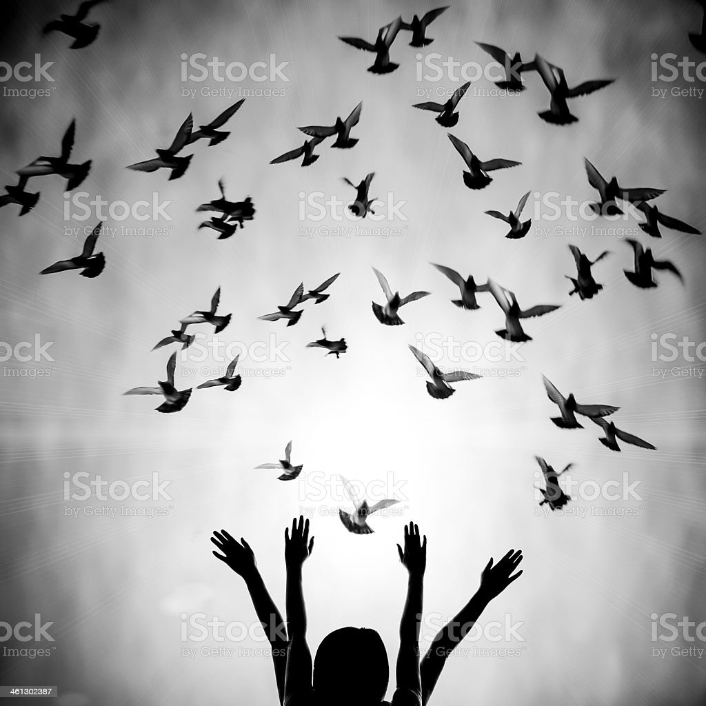 Girl's silhouette with doves flying above her stock photo