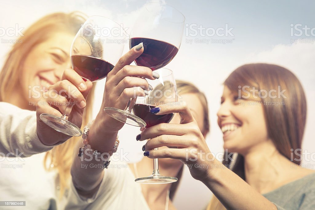 Girls toasting with wine outdoors during happy hour stock photo