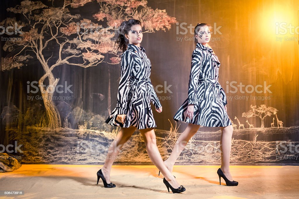 Girls Zebras In Savannah stock photo