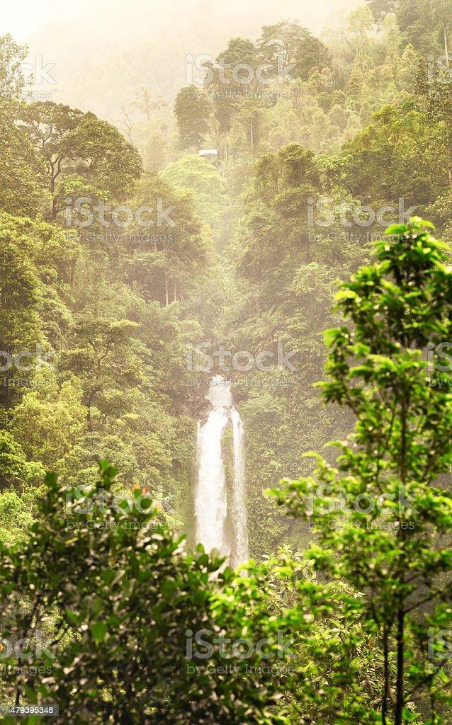 GitGit waterfalls North Bali emerging from lush jungle stock photo