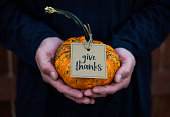Give thanks. Male hands holding a pumpkin for Thanksgiving