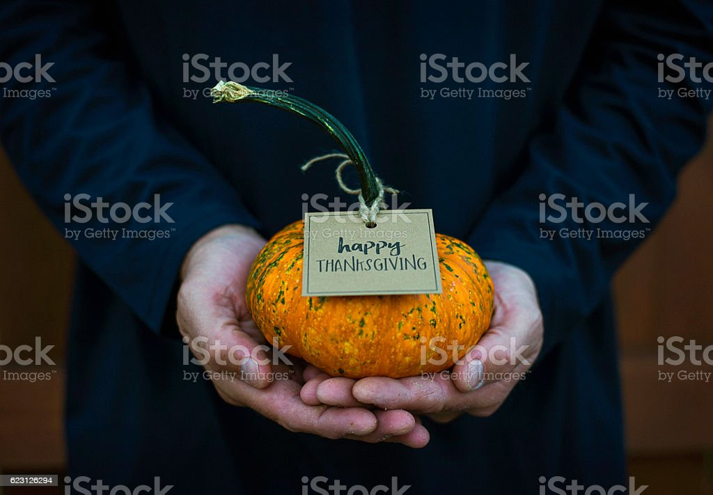 Give thanks. Male hands holding a pumpkin for Thanksgiving stock photo