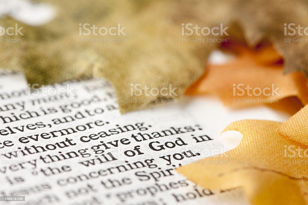 Give Thanks Thanksgiving KJV Bible Verse royalty-free stock photo