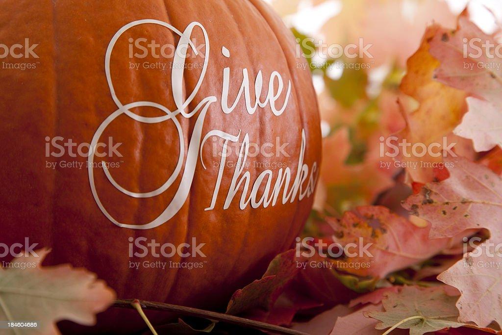 Give Thanks - Thanksgiving Theme stock photo