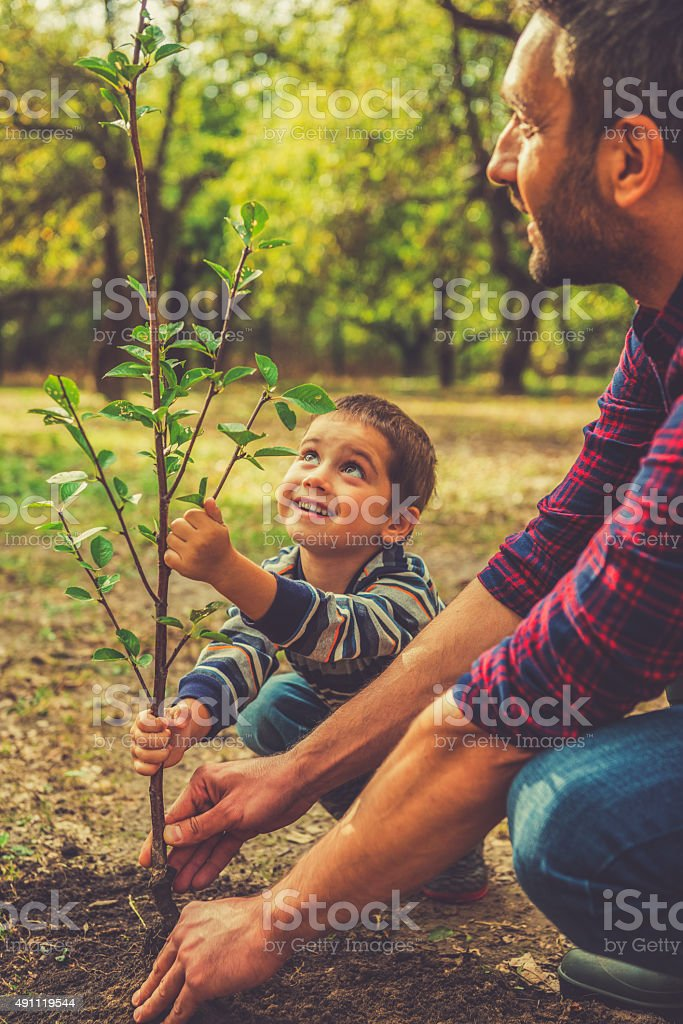 Giving a new life. stock photo