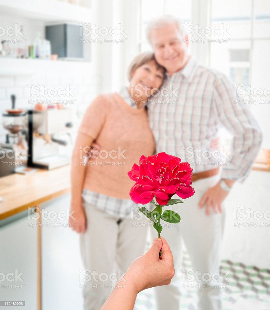Giving a rose to the grandparents royalty-free stock photo