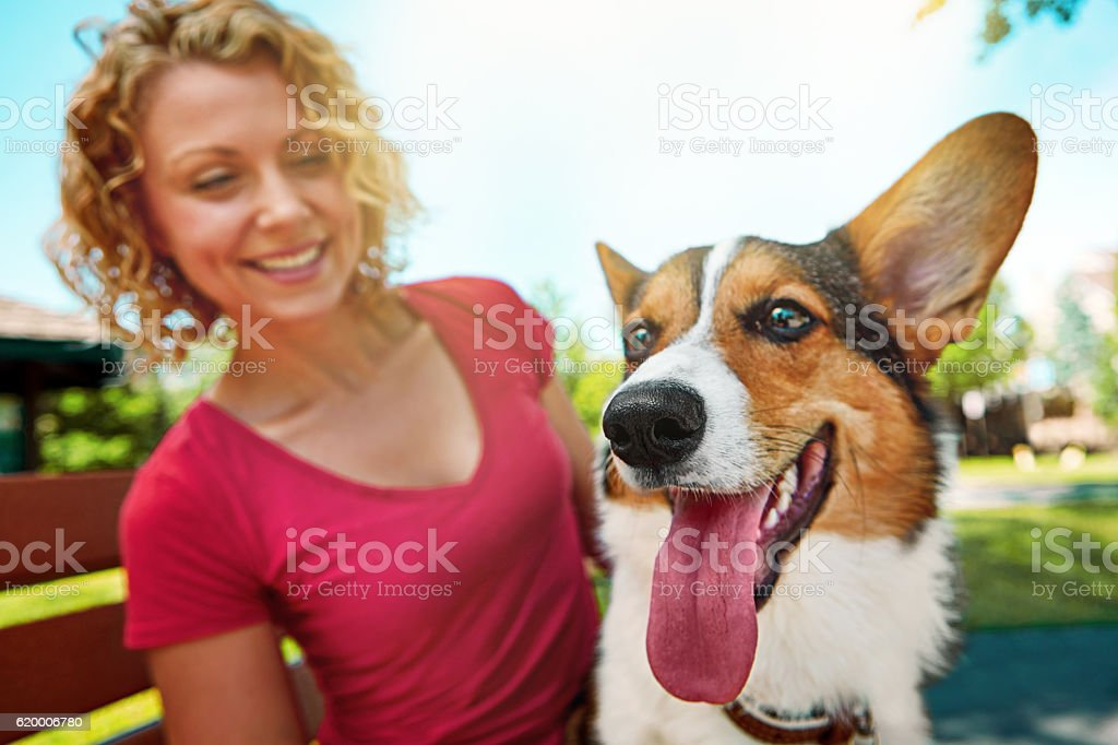 Giving him the love that every dog deserves stock photo