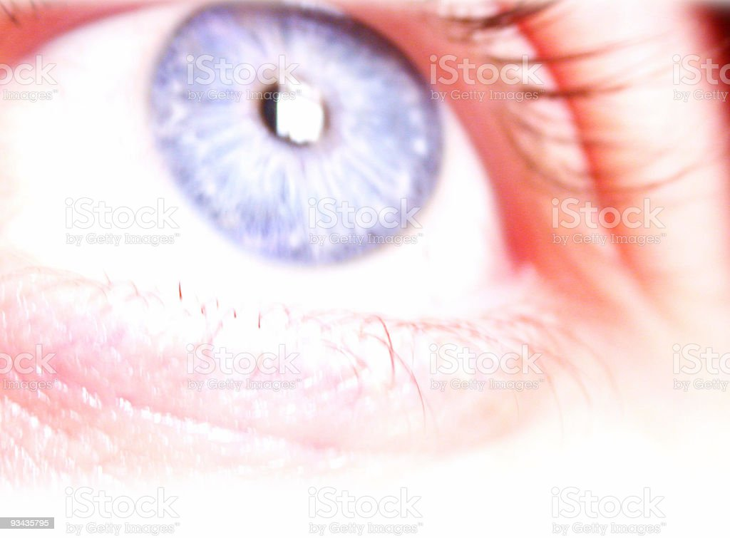 Giving You The Eye royalty-free stock photo