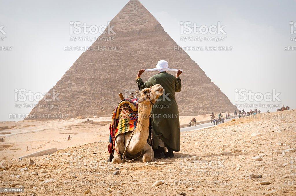 Giza Pyramids and camel - Egypt stock photo