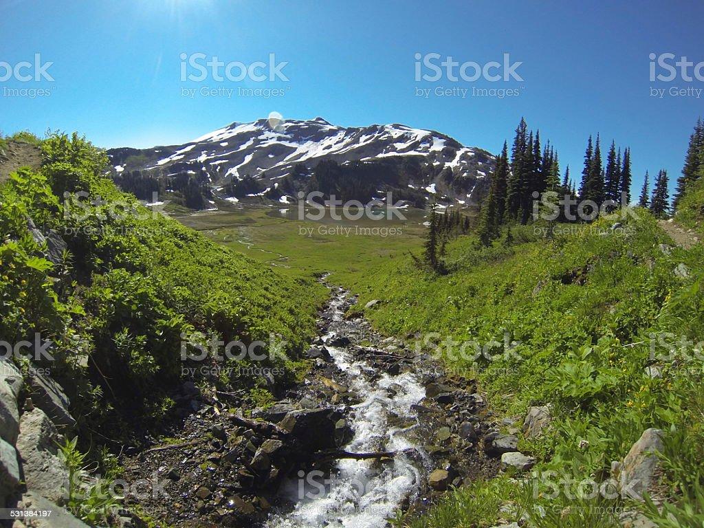 Glacial stream stock photo
