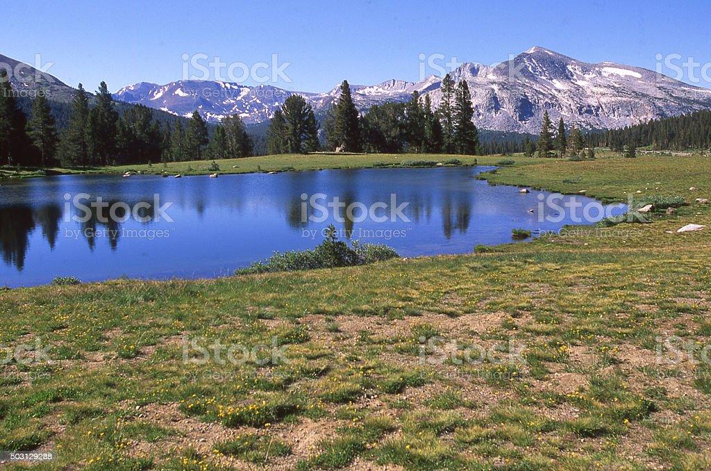 Glacial tarn small lake Tioga Pass Yosemite National Park California stock photo
