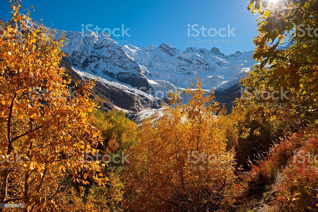 Glacier Alibek stock photo