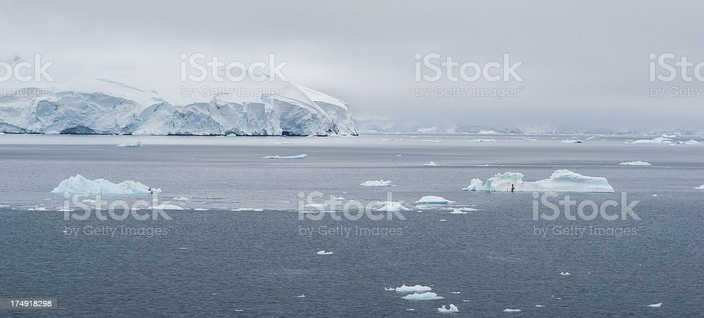 Glacier Antarctic Landscape Panorama royalty-free stock photo
