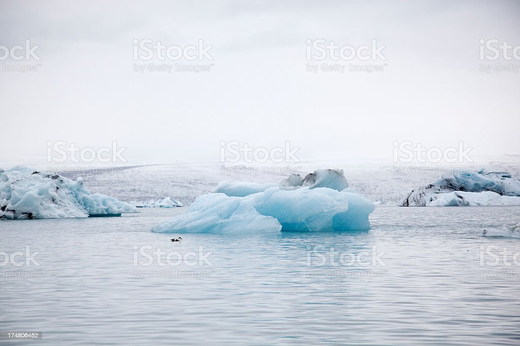 glacier lagoon and iceberg royalty-free stock photo