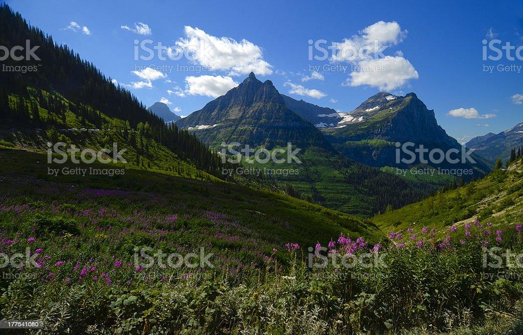 Glacier National Park Mountains royalty-free stock photo