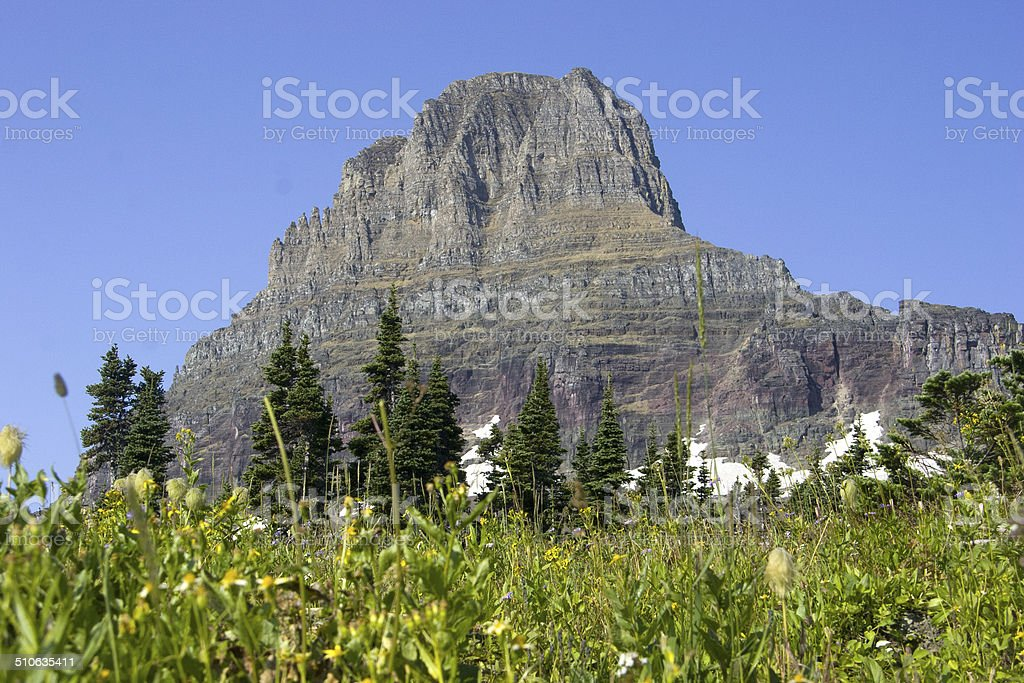 Glacier National Park - Wildflowers and Clements Mountain stock photo