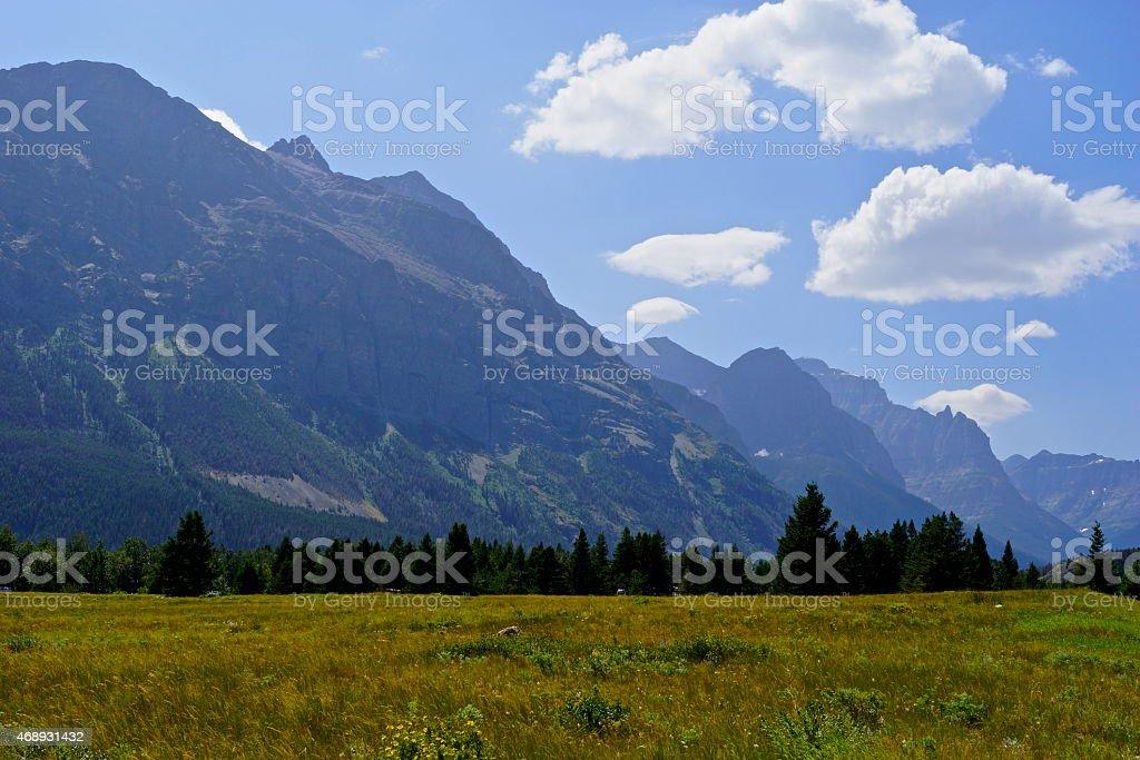 Glacier NP Meadow stock photo