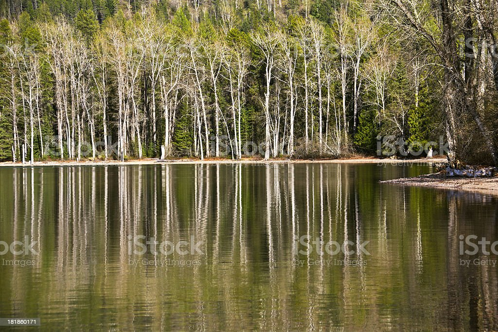 Glacier Park reflections royalty-free stock photo