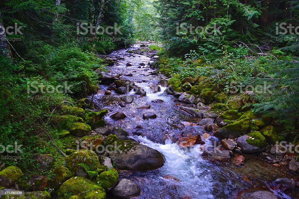 Glacier Peak Creek stock photo