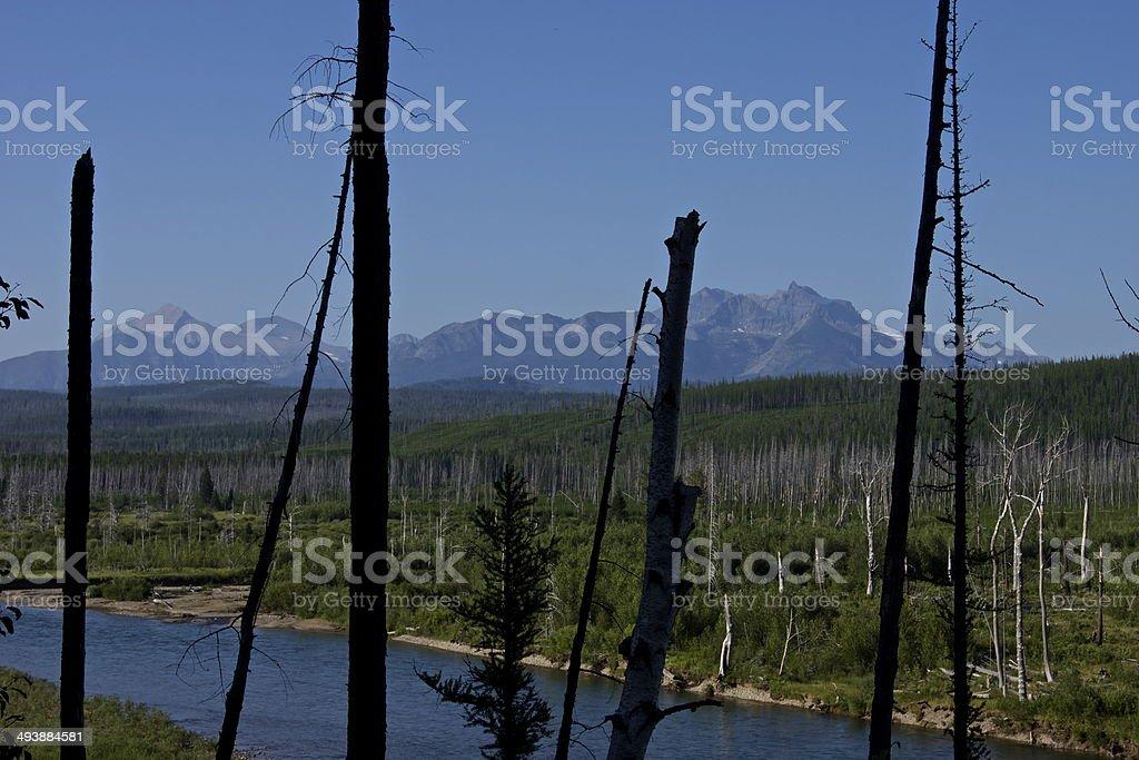NW Glacier Rare Angle stock photo