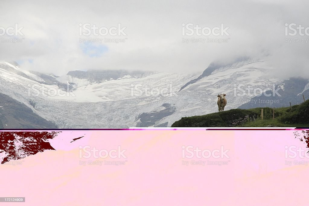 Glacier view switzerland royalty-free stock photo
