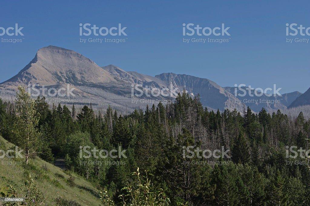 Glacier's East Edge stock photo