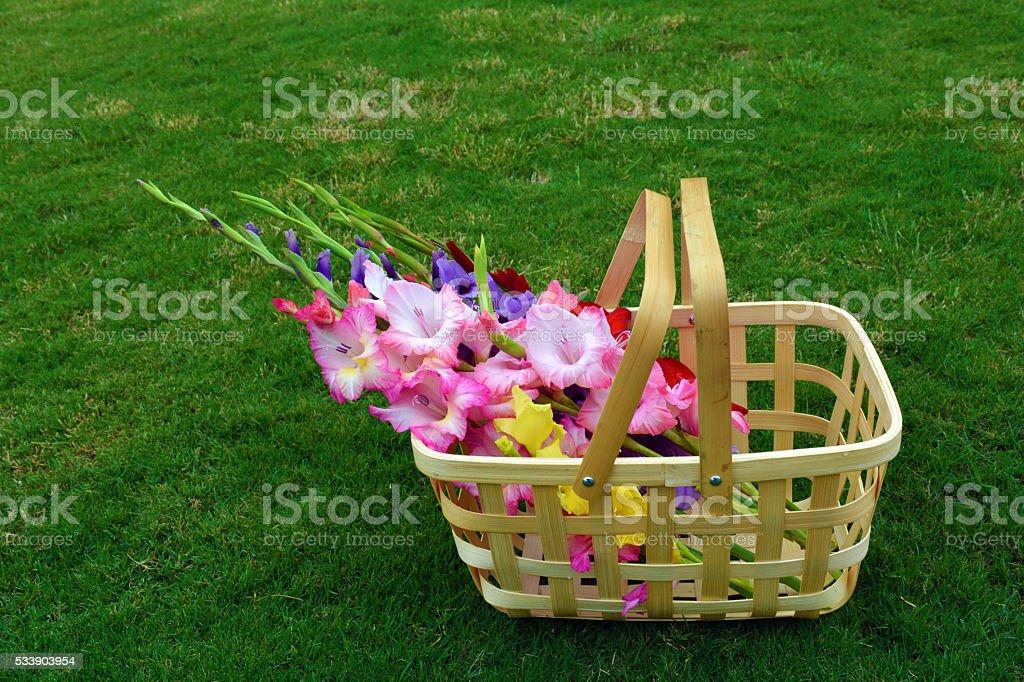 Glad Basket stock photo