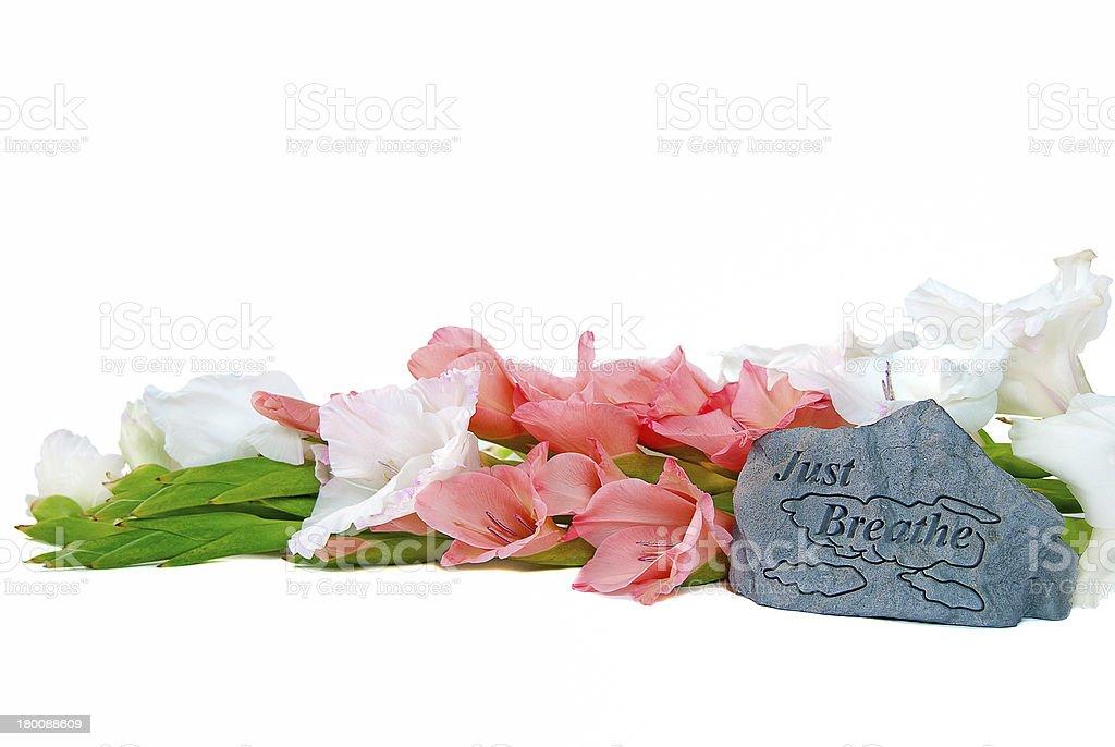 Gladiolas with rock royalty-free stock photo
