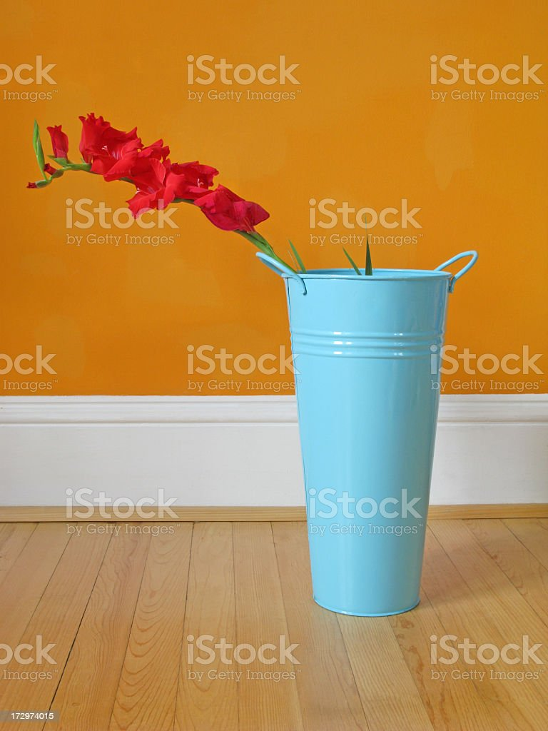 Gladiolus garbage can and orange wall. stock photo