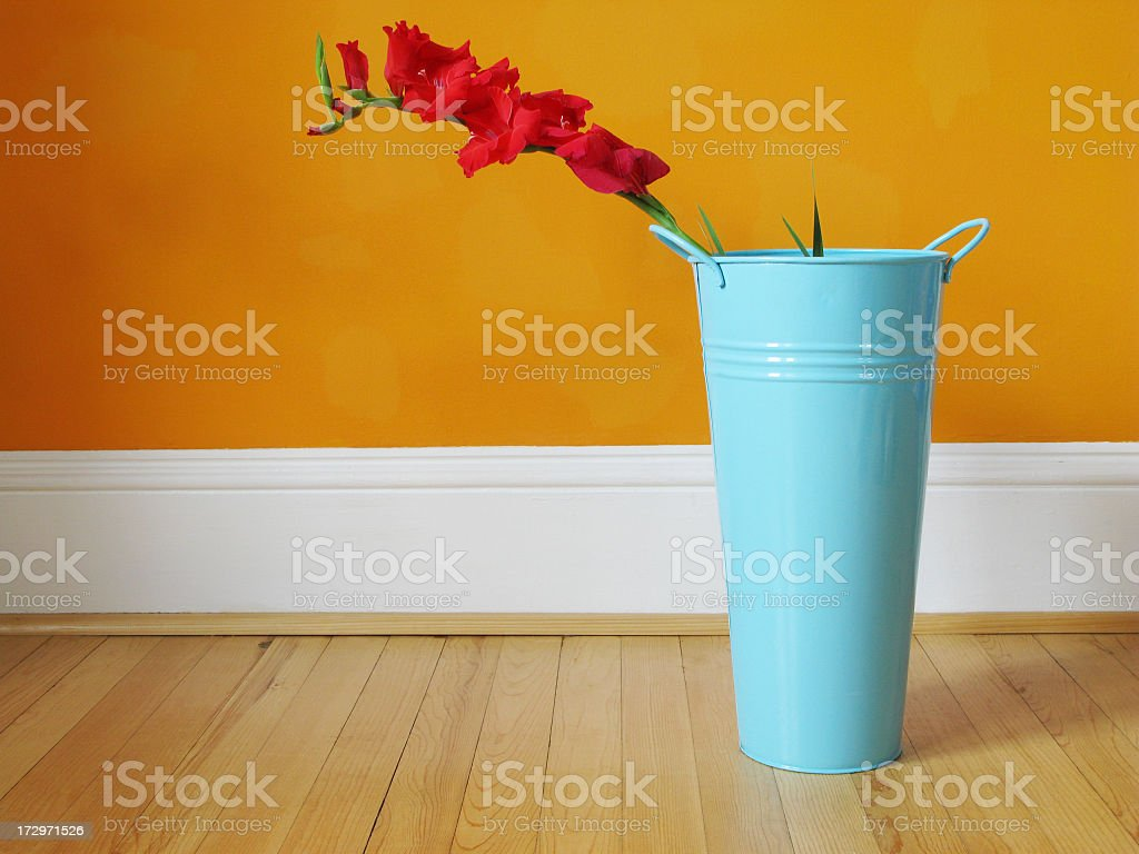 Gladiolus in a garbage can. royalty-free stock photo