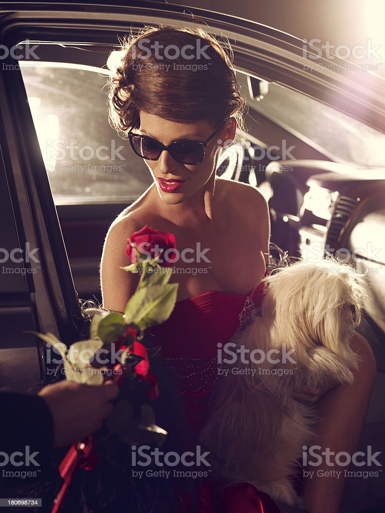 Glamorous Celebrity Woman In Red Evening Gown Receiving Rose stock photo