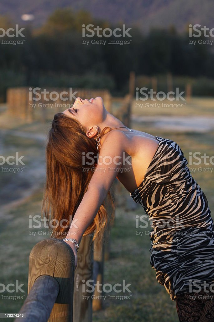 glamorous girl with long hair on the fence stock photo
