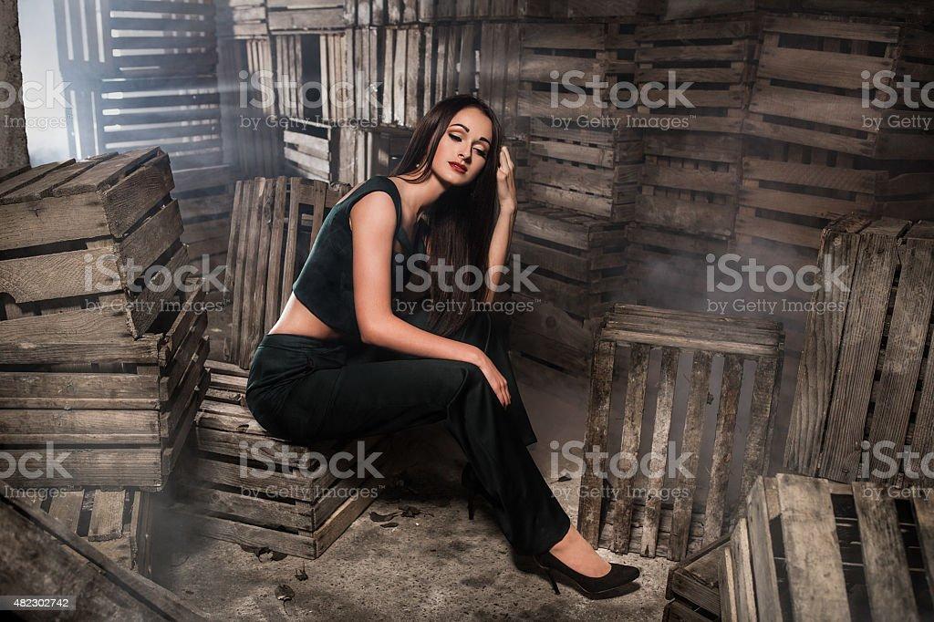 Glamorous woman in dress royalty-free stock photo