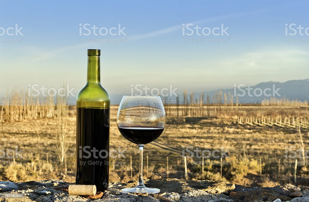 Glass and bottle of red wine royalty-free stock photo