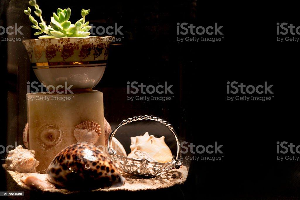 Glass bonsai stock photo