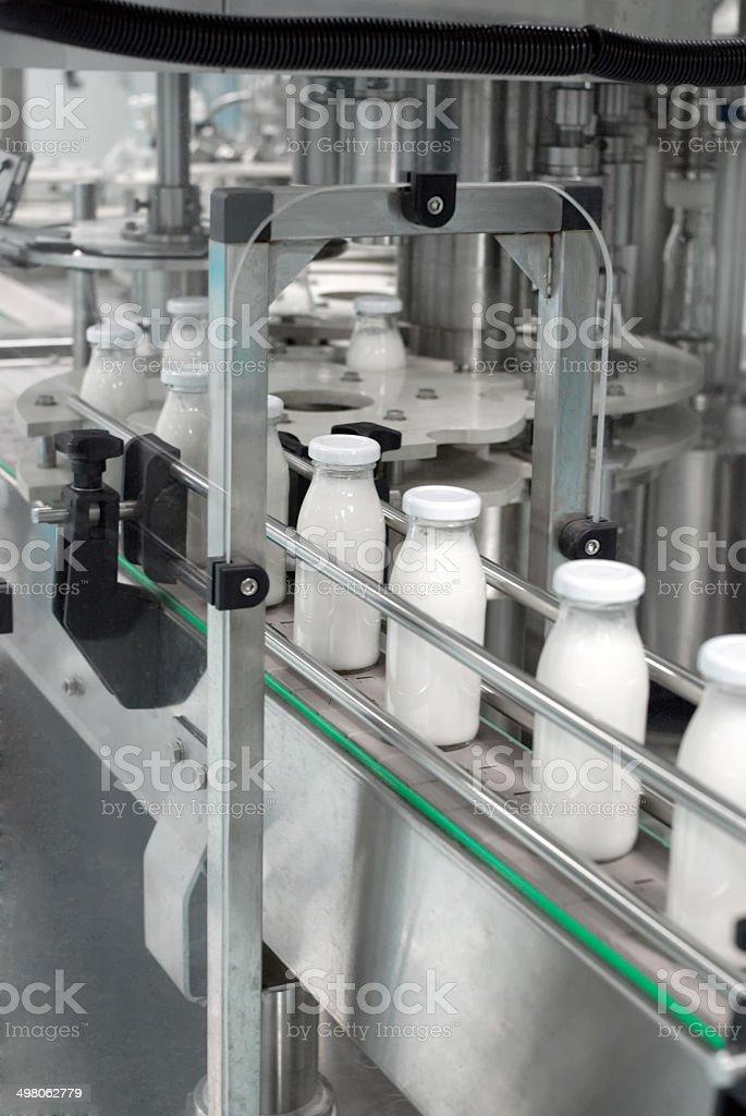 Glass bottles on the conveyor belt stock photo