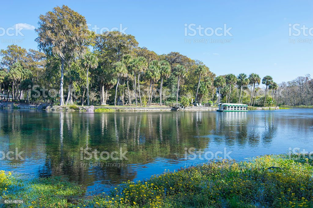 Glass Bottom Boat at Silver Springs stock photo