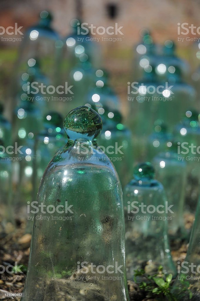 Glass Cold Frames stock photo