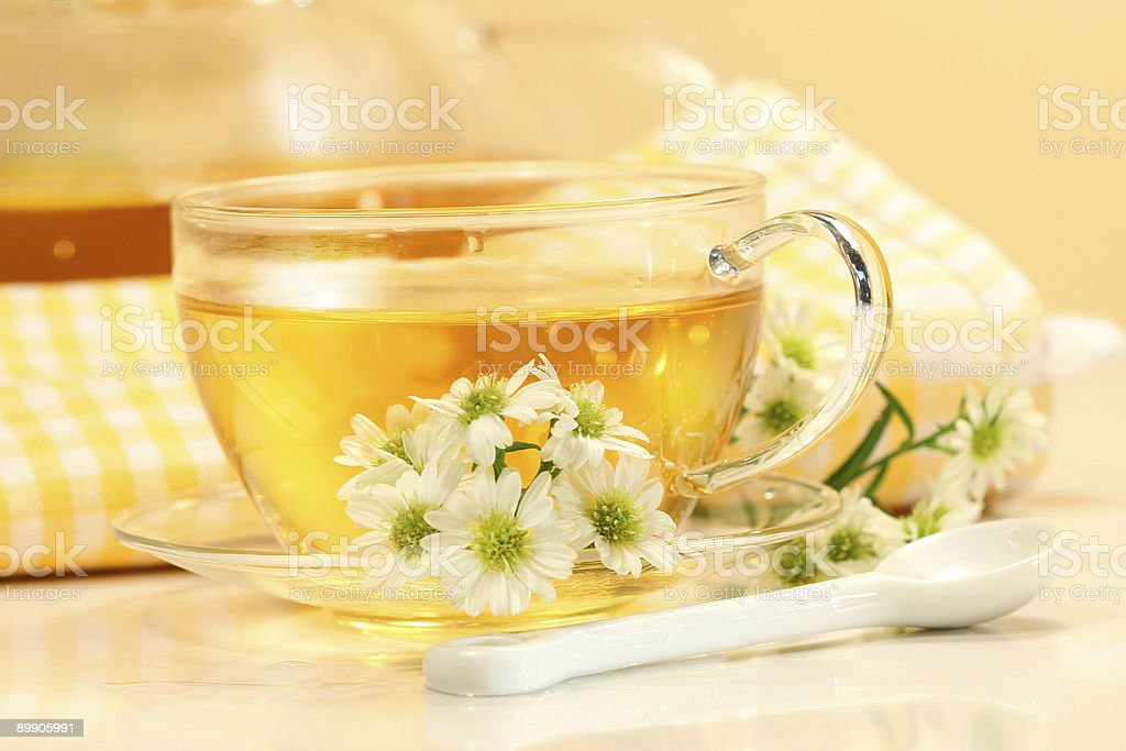 Glass  cup with herbal tea royalty-free stock photo