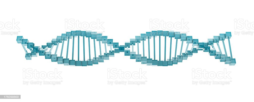glass DNA model. royalty-free stock photo