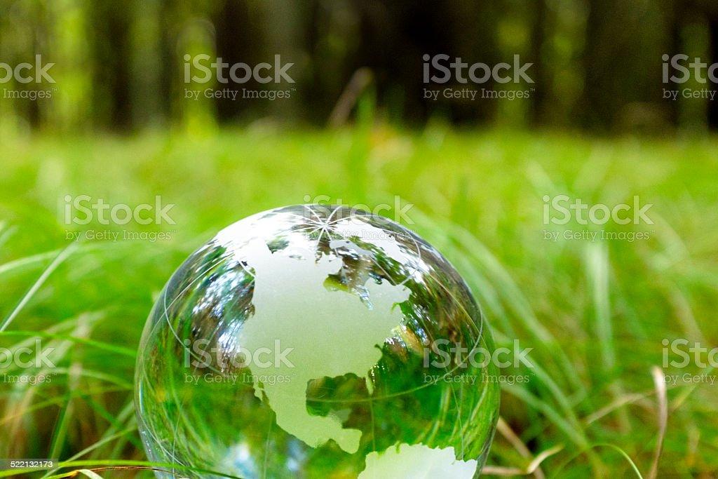 Glass Globe in Nature stock photo