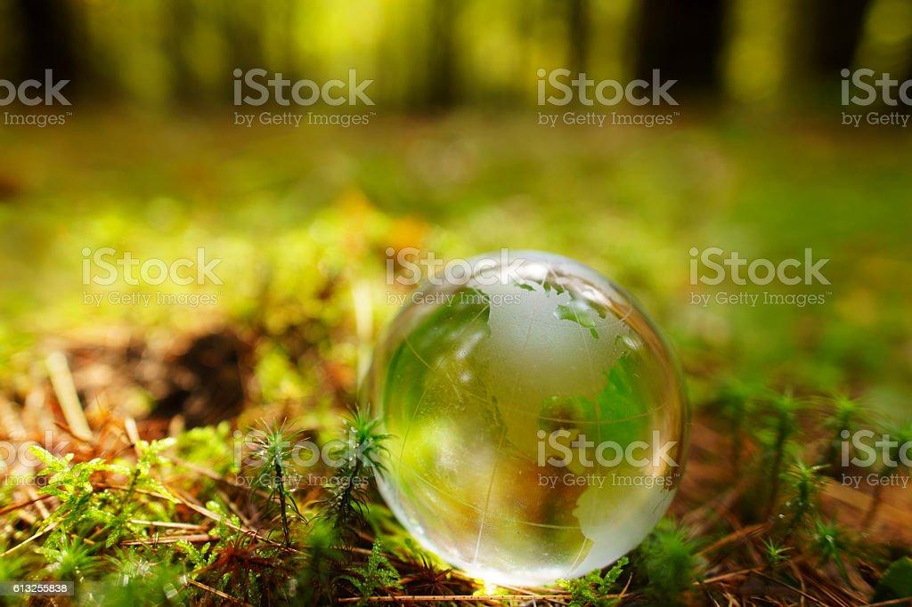 Glass Globe on Forest Floor stock photo