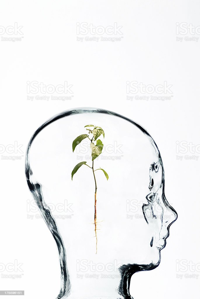 Glass head series. Thought process. royalty-free stock photo