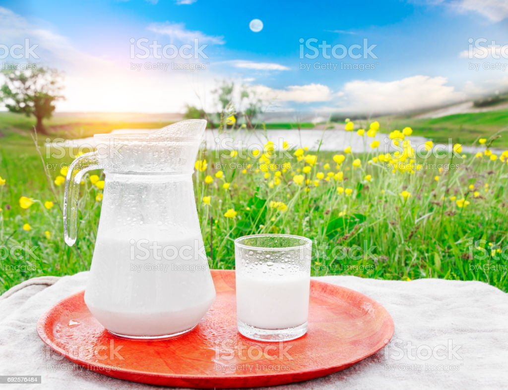 Glass jug with milk and a glass on the grass against a background of picturesque green meadows with flowers at clear sunny summer day. A herd of cows in field. Fresh organic milk. stock photo
