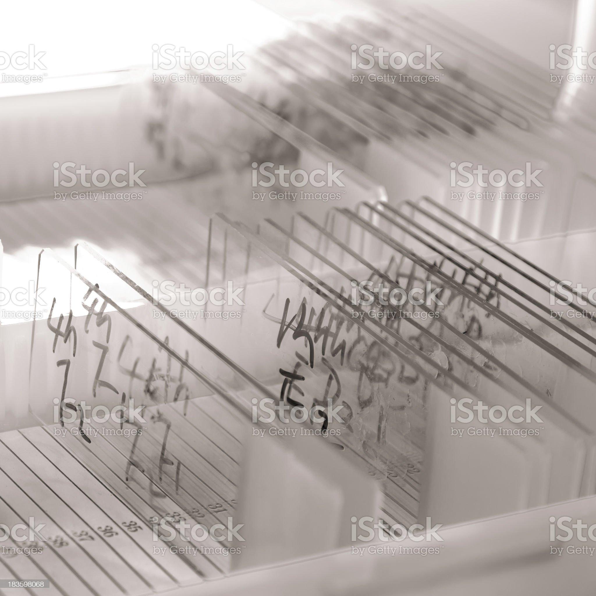 glass microscope slide royalty-free stock photo