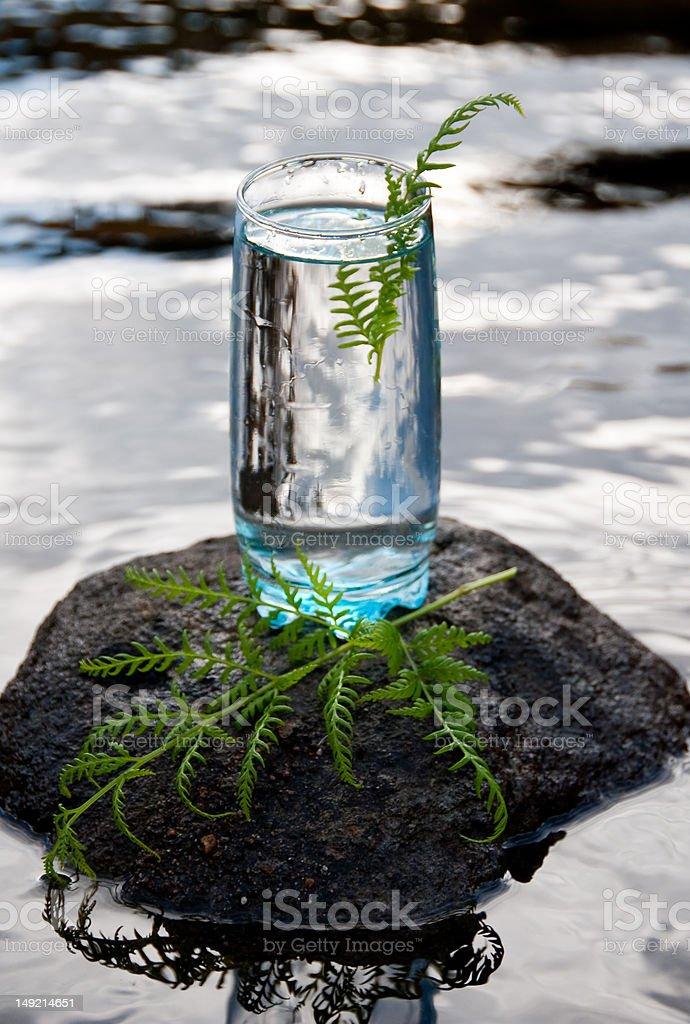 Vaso de agua dulce foto de stock libre de derechos