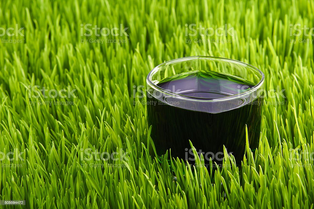 Glass of juice on the grass stock photo